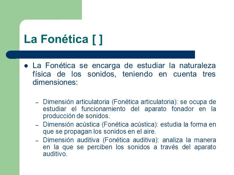 La Fonética [ ] La Fonética se encarga de estudiar la naturaleza física de los sonidos, teniendo en cuenta tres dimensiones: